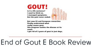 end of gout e book pdf download